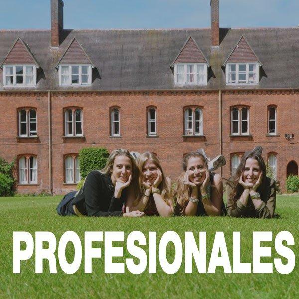 cursos de inglés para profesionales