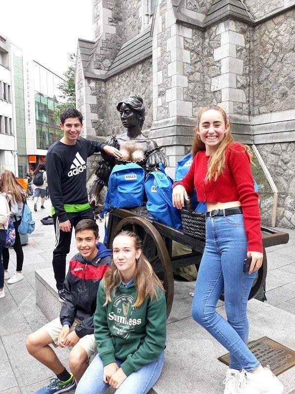 grupos reducidos en Irlanda