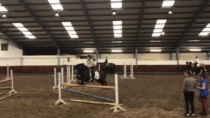 inglés y equitación