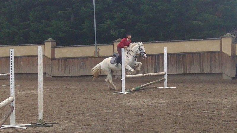 inglés y equitación en Irlanda